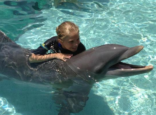 Hold a dolphin in Miami