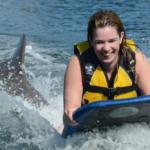 Anguilla St Martin Dolphin Program