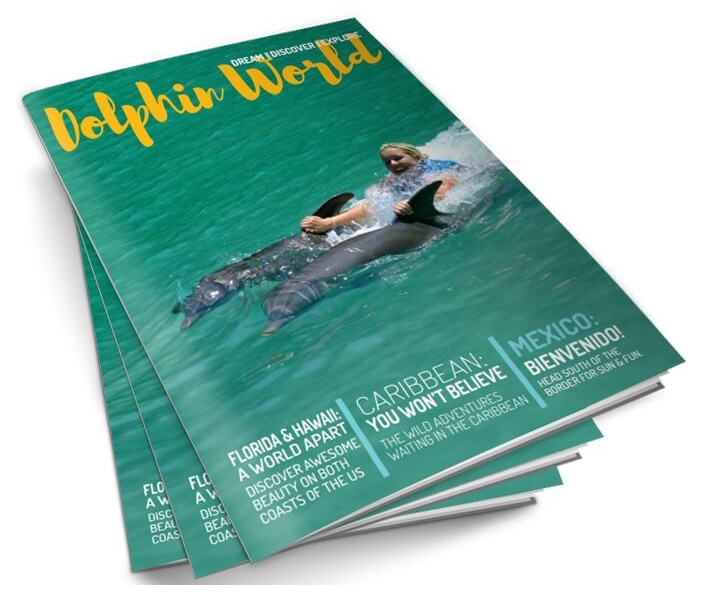 dolphin world magazine