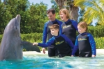 Swim with Dolphins West Palm Beach Tours