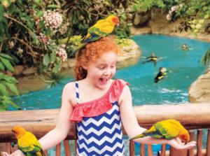 Bird_Petting-768x572