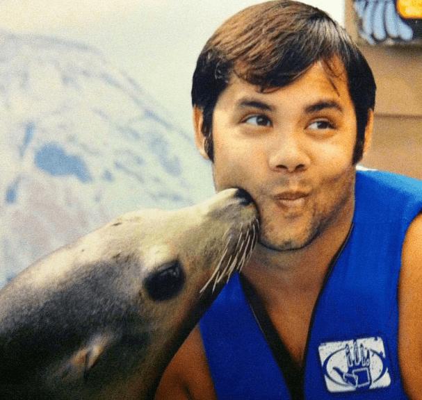 Swim with Sea Lions Oahu Hawaii