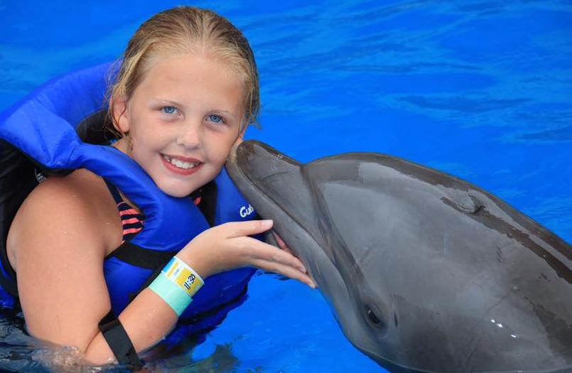 Swim With Dolphins Near Destin Beach 800 667 5524