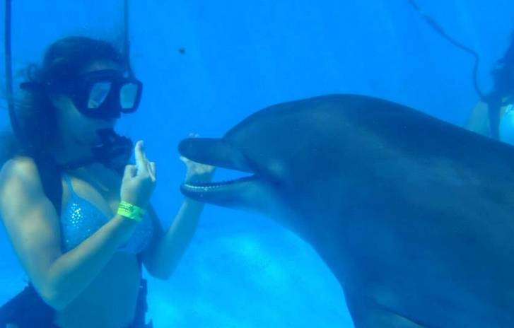 lady scuba diver with dolphin