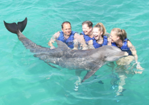 Dolphin Swim with Family St Thomas