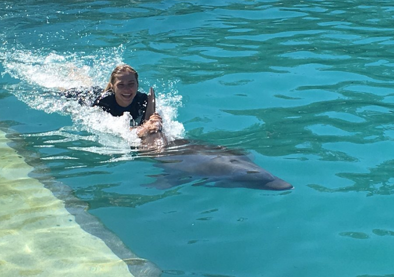 Swim with Dolphins Near Ft Lauderdale