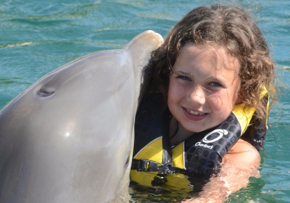 Dolphin Encounter Puerto Plata