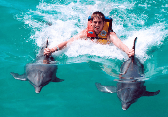 Dolphin Swimming and Ride in Cancun Mexico