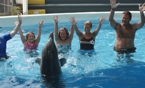 Family fun with dolphins in Panama City Beach