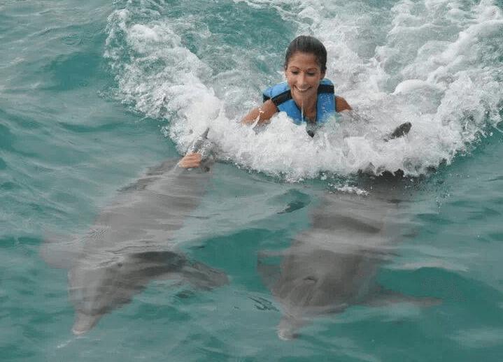 Mexico double dorsal fin ride