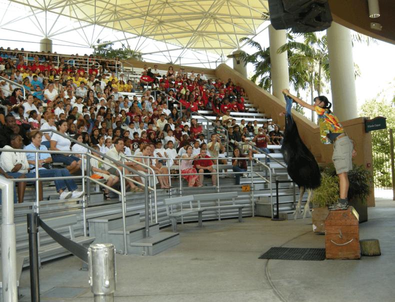 VIP Animal Tour Miami