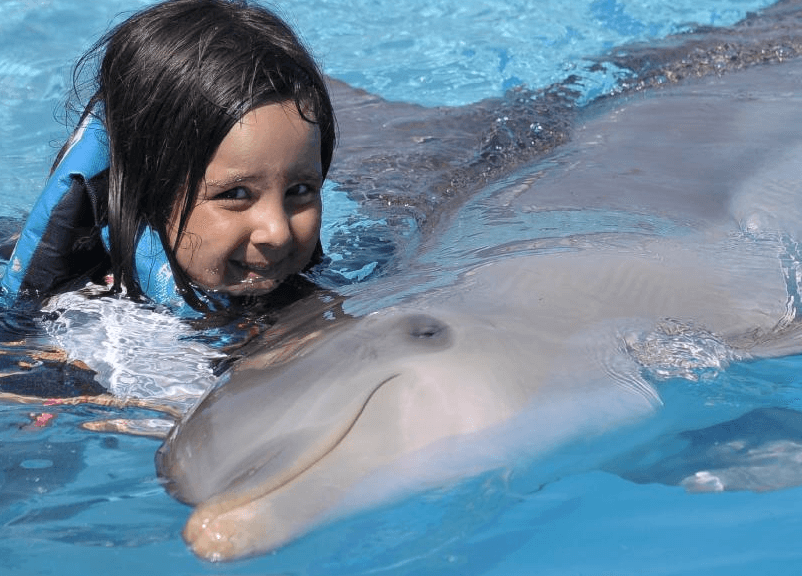 Dolphin Encounter Punta Cana Dominican Republic