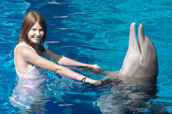Hold on Dolphin Peck Fin Panama City Beach