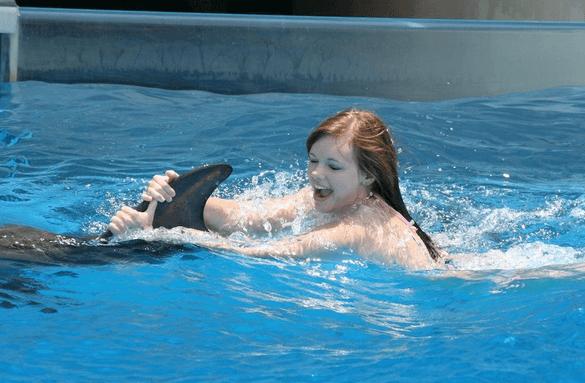 Dorsal Fin ride with dolphin swim panama city beach