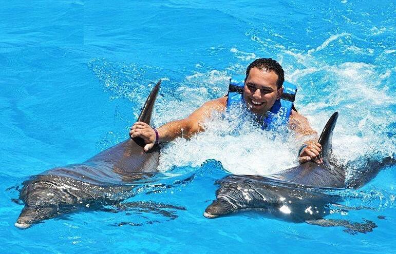 Swim with Dolphins Punta Cana