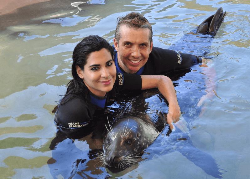 Fun with Seals in Miami FL