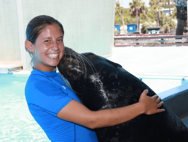 Swim with Sea Lions Panama City Beach